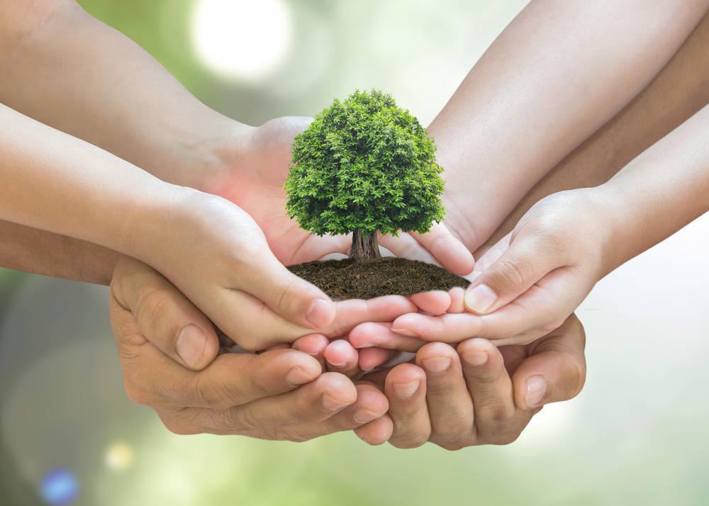 La investigación en materia medioambiental una necesidad empresarial que gusta al gran público
